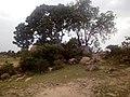 HILLS AT TIGA PARK KANO STATE (2).jpg