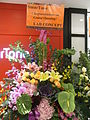 HK Admiralty Queensway Plaza LAB Concept SmarTone shop flowers Aug-2012.JPG