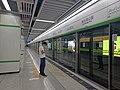Haicang Bay Park Station Platform.jpg