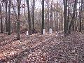 Hanging Moss Cemetery (5288679313).jpg