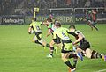 Harlequins vs Saints (9756697505).jpg