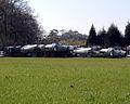Harriers (860468344).jpg