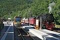 Harzquerbahn Merkwürdige Zugkreuzung - geo.hlipp.de -1016.jpg