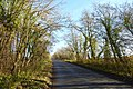 Heading up Swineridge Lane (geograph 3763578).jpg