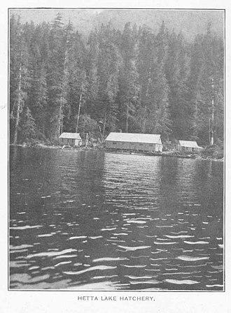 Cordova Bay - Image: Hetta Lake Hatchery