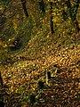 Hidden Bench - panoramio.jpg