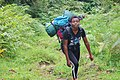 Hiking up Mount Cameroon.jpg