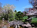 Hillwood Gardens in April (16977332553).jpg