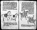 Hindi Manuscript 191, fols. 47 verso 48 rect Wellcome L0024240.jpg