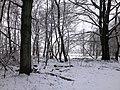 Hinter dem Zaun - panoramio (1).jpg