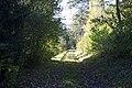 Hinterrois - panoramio.jpg