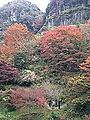 Hitome-Hakkei in Shin-Yabakei Valley from observation deck 20141117-3.jpg