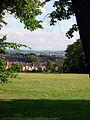 Horfieldcommon.jpg