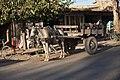 Horse carriage, Herat, Afghanistan.jpg