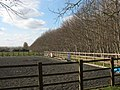 Horse exercise area - geograph.org.uk - 1222196.jpg
