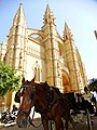 Horse with Cathedral Backdrop - Palma de Mallorca - Mallorca - Spain (14481910185).jpg