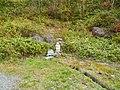 Hoshimata, Tsumagoi, Agatsuma District, Gunma Prefecture 377-1611, Japan - panoramio (14).jpg