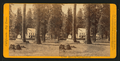 Hotel at Big Trees, - Calaveras Co, by John P. Soule.png