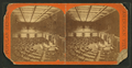 House of Representatives, by E. & H.T. Anthony (Firm).png