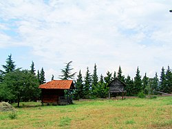 Houses at the Ethnographic museum.jpg