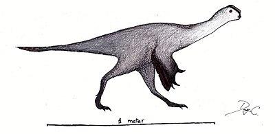 Huanansaurus restoration.jpg