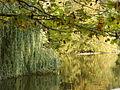 Hucker Moor4.jpg
