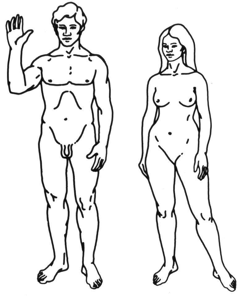Ilustracja mężczyzny i kobiety Homo sapiens sapiens z zasobów misji Pioneer 11