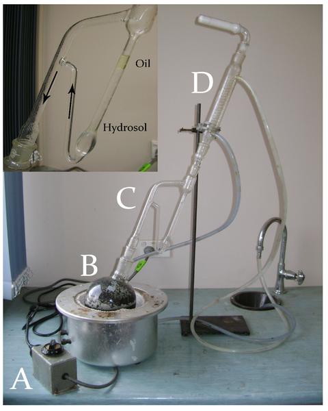 File:Hydrodistillation using the Clevenger-type apparatus - N. Sadgrove and G. Jones, Agriculture 2015, 5(1), 48-102.png