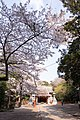 Ikisu Shrine 07.jpg