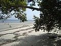 Ilha das peças - panoramio.jpg