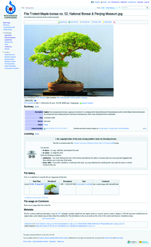 Illustrating Wikipedia, page 5 step 6, file page.tif