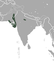 Indian Long-eared Hedgehog area.png
