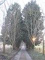 Ingleden Park Road - geograph.org.uk - 1747936.jpg