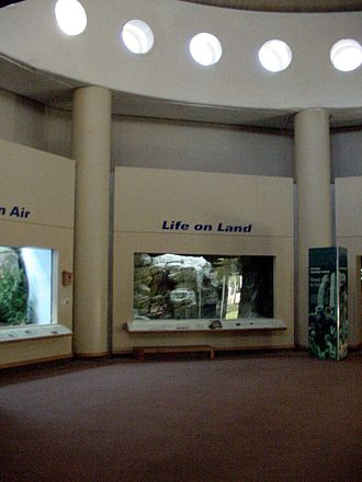 Prospect Park Zoo - The foyer of the Animal Lifestyles Building