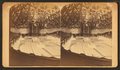 Interior of Mormon Tabernacle, Salt Lake City, from Robert N. Dennis collection of stereoscopic views.png