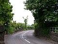 Is it a Tree ... or a Lamp Post on Oughtibridge Lane, Oughtibridge^ - geograph.org.uk - 822726.jpg
