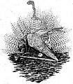 Ivoi - La Mort de l'Aigle (page 404 crop).jpg