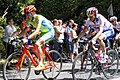 Janez Brajkovič at 2012 Summer Olympics – Mens road race.jpg