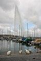 Jet d'eau de Genève, 2011-3.jpg
