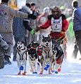 John Beargrease Dogsled Marathon - Two Harbors Minnesota (32555593672).jpg