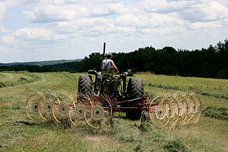 Hay rake - A tractor with a 10-wheeled star-wheel rake forms a windrow; Wisconsin, USA.