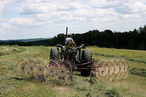 John Deere 4020 with star-wheel rake 3