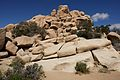 Joshua Tree National Park (3433755538).jpg