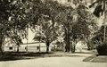 KITLV - 78471 - Kleingrothe, C.J. - Medan - Fermentation and sorting barns on a plantation at Padang Bulan in Medan, Sumatra - circa 1905.tif