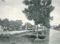 KITLV - 80216 - Kleingrothe, C.J. - Medan - Hotelweg Medan, Sumatra - 1898.tif