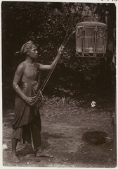 KITLV 28545 - Sem Céphas - Young man pulls a birdcage on ropes on, presumably at Yogyakarta - Around 1900.tif