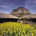 KOCIS Jeju Island (5983277074).jpg
