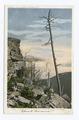 Kaaterskill Clove, Sunset Rock, Catskills, N. Y (NYPL b12647398-62610).tiff
