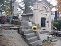 Kalisz cm Gornoslaska 2.jpg