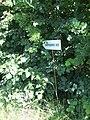 Kaniv Nature Reserve (May 2018) 49.jpg